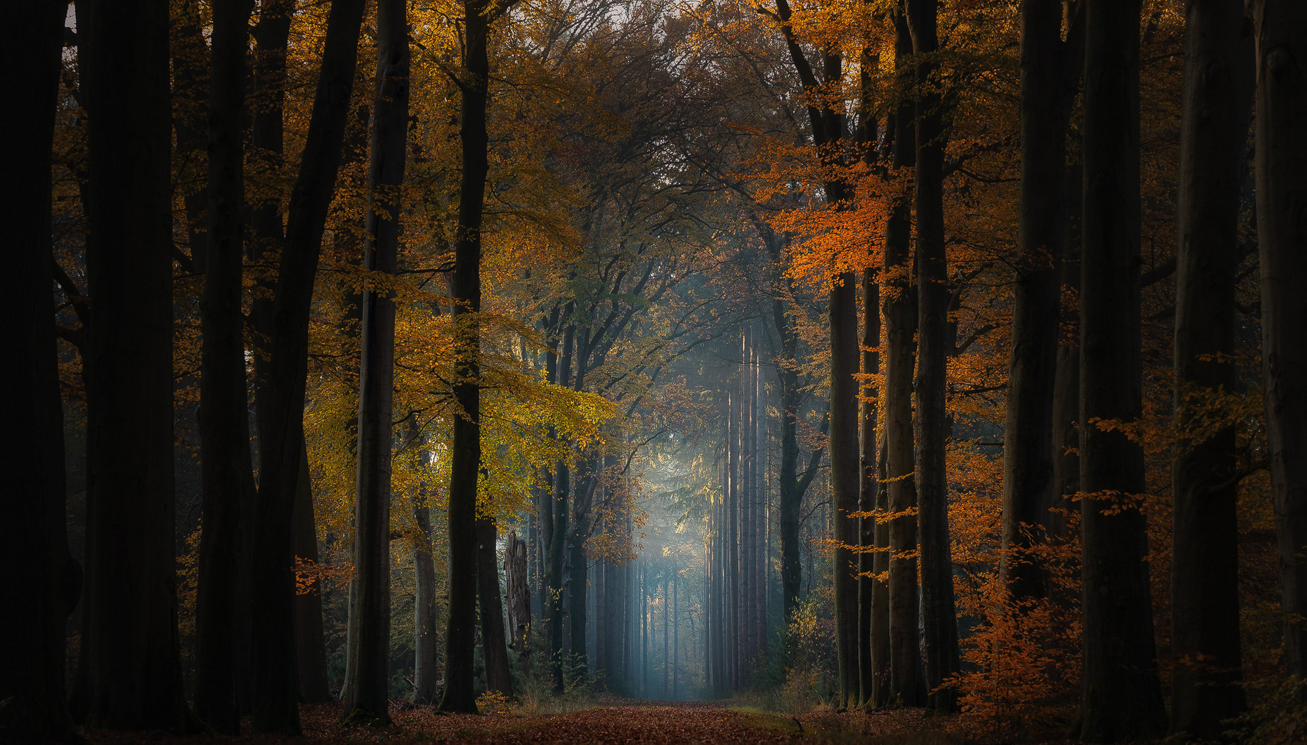 Herbstbühne