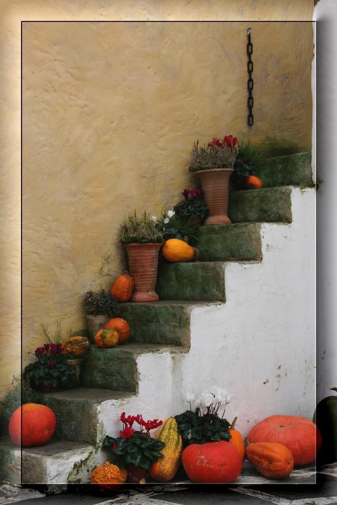 Herbstdeko foto bild stillleben stillleben alter for Bilder herbstdeko