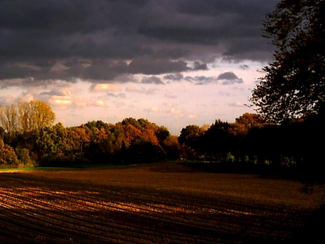 Herbsteindruck vom Lande