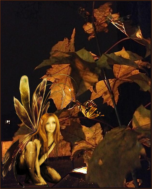Herbstelf auf dem Heimweg entdeckt