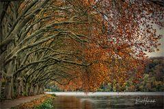 Herbstende im Ruhrgebiet .....
