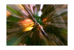 Herbstexplosion