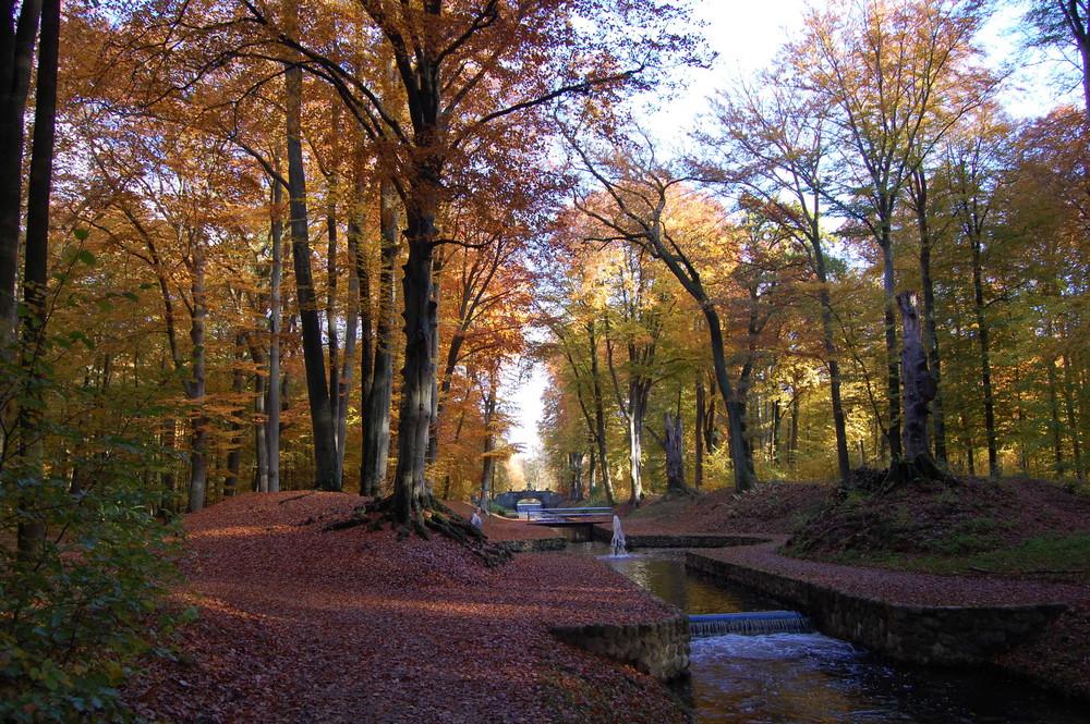 Herbstfärbung im Ludwigsluster Schlosspark LWL Kanal und St. Brücke