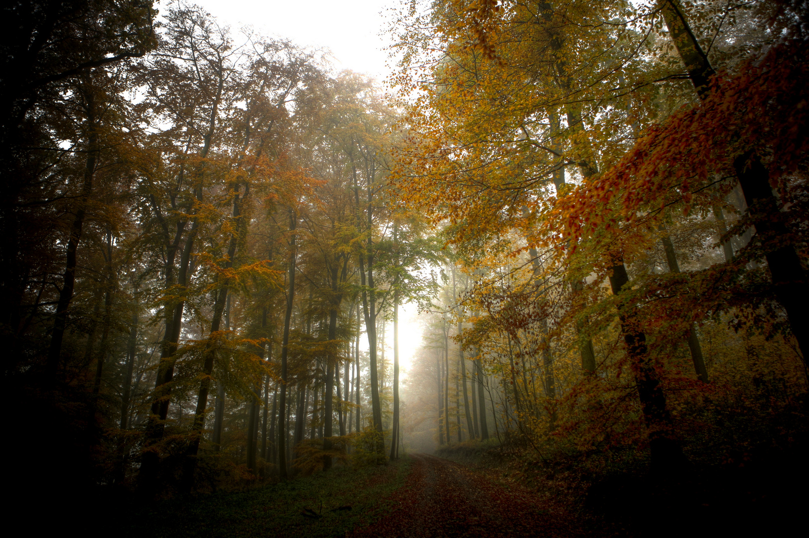 Herbstfahrben