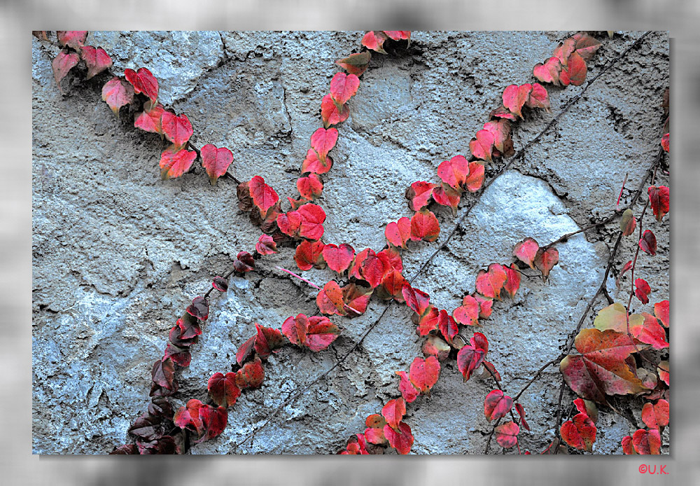 >>>Herbstfarben