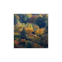 Herbstfarben 3