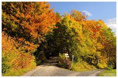 - Herbstfarben 3 -