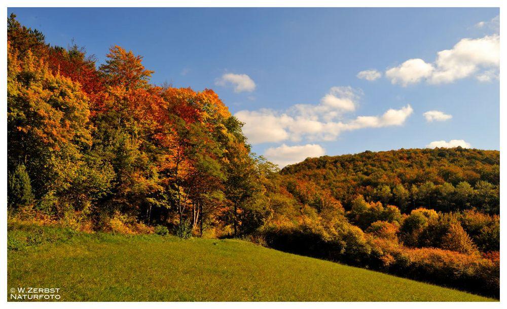 - Herbstfarben 4 -