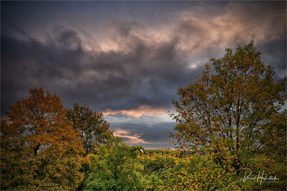 Herbstfarben .....