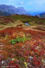 Herbstfarben am Klausenpass