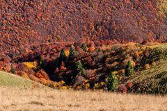 Herbstfarben am Monte Baldo