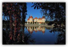 Herbstfarben am Schloss Moritzburg