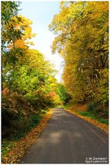 - Herbstfarben -