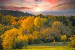 Herbst:Farben