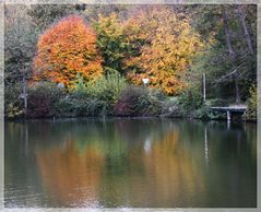 Herbstfarben fallen ins Auge