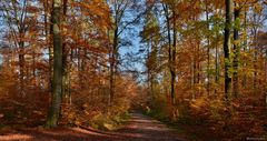 Herbstfarben - Herbstfeuerwerk - Herbstgenuss