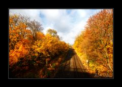 Herbstfarben (I)