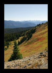 [ Herbstfarben im Manning Provincial Park ]