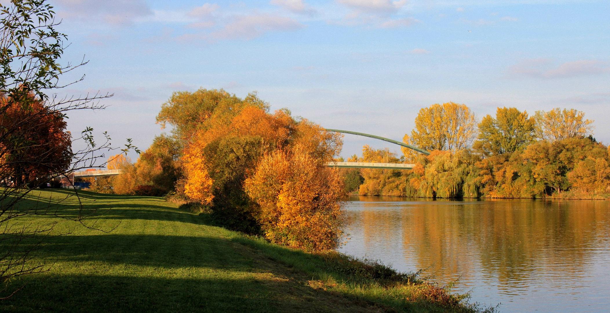 Herbstfarben in der Abendsonne