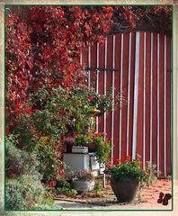 * HerbstFarben in Mudau *