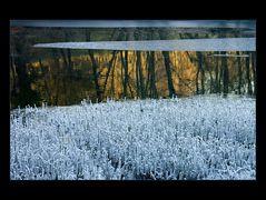 Herbstfarben unter Wintereis...