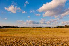 Herbstfeld 2