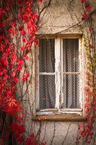 Herbstfenster