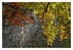 Herbstfeuer vor kühlem Fels