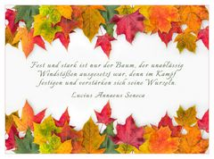 Herbstffarben....