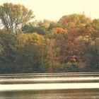 Herbstflair am Schwanenteich
