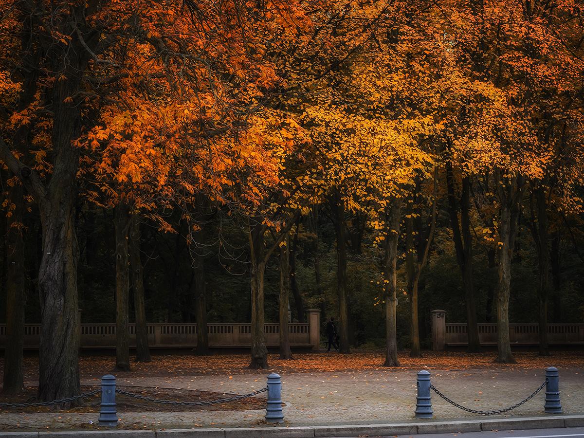 Herbstflüstern
