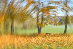 Herbstfocus