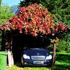 Herbstgarage