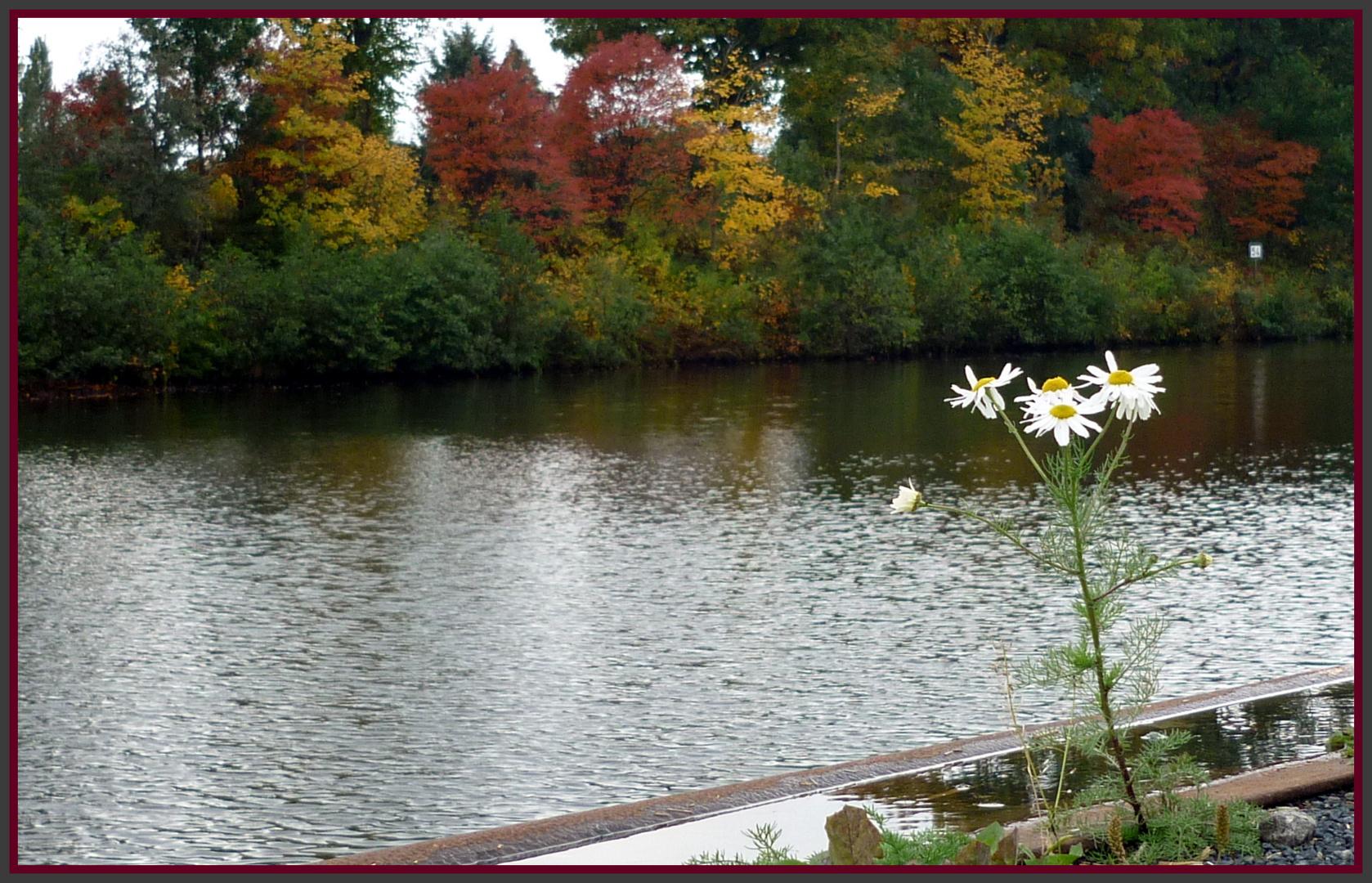 Herbstgegensatz