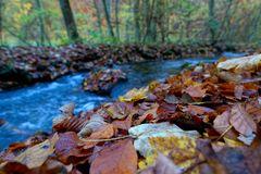 Herbstgemälde...