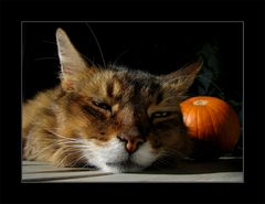 Herbstgenuss