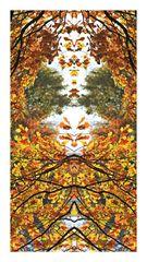 Herbstgesichter