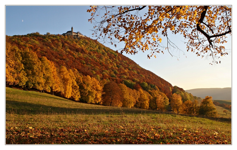 Herbstglühn
