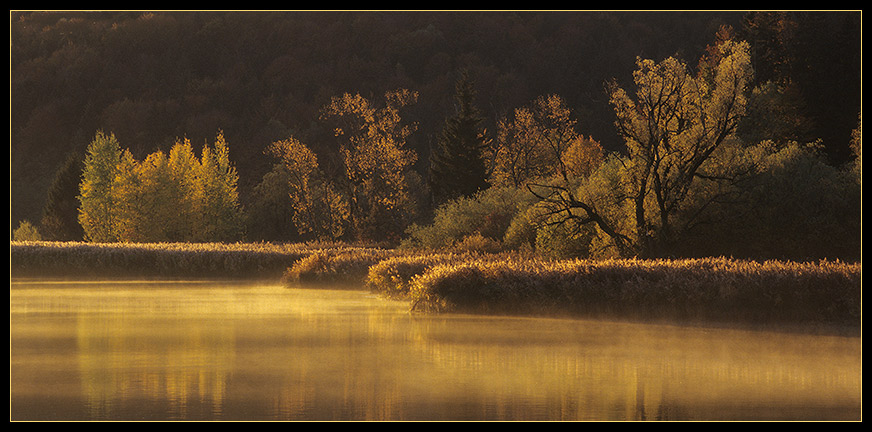 Herbstgold (Pano)