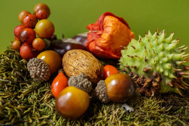 Herbstgruss