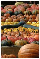 Herbstgruß III