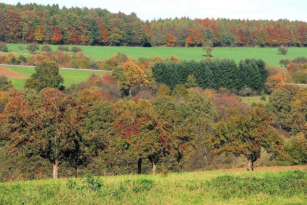 Herbstheimat 44