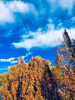 Herbsthimmel .....