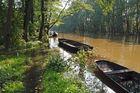 Herbsthochwasser im Spreewald