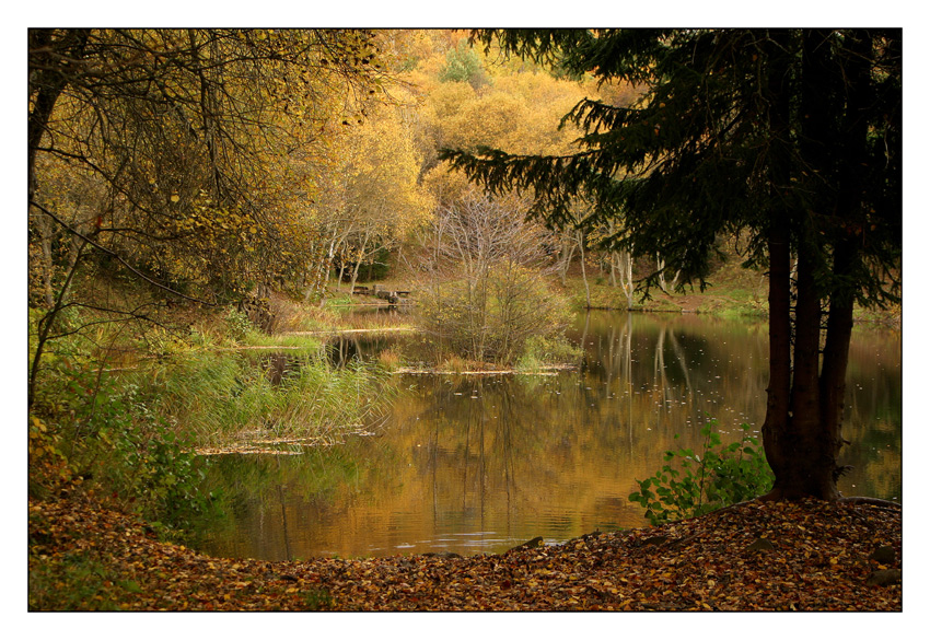 Herbstidyll am Steinernen Haus
