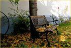 Herbstidyll...