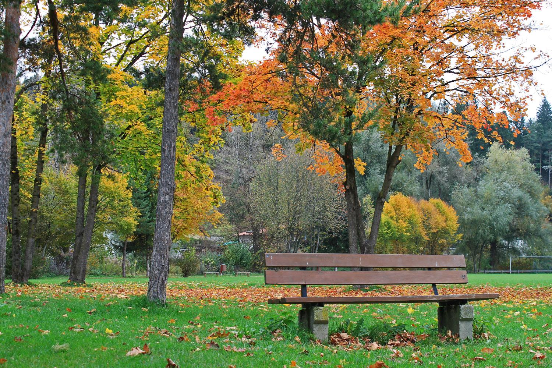 *Herbstidylle*