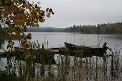 Herbstiger tag im Sweden