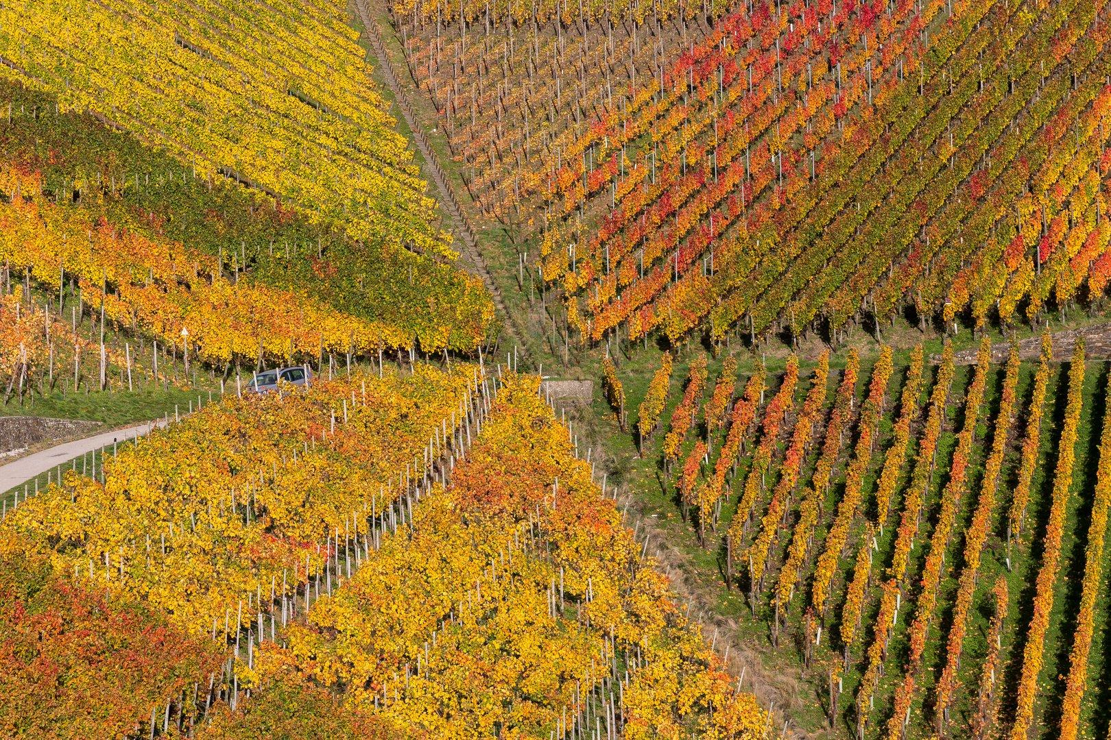 Herbstimmung im Ahrtal