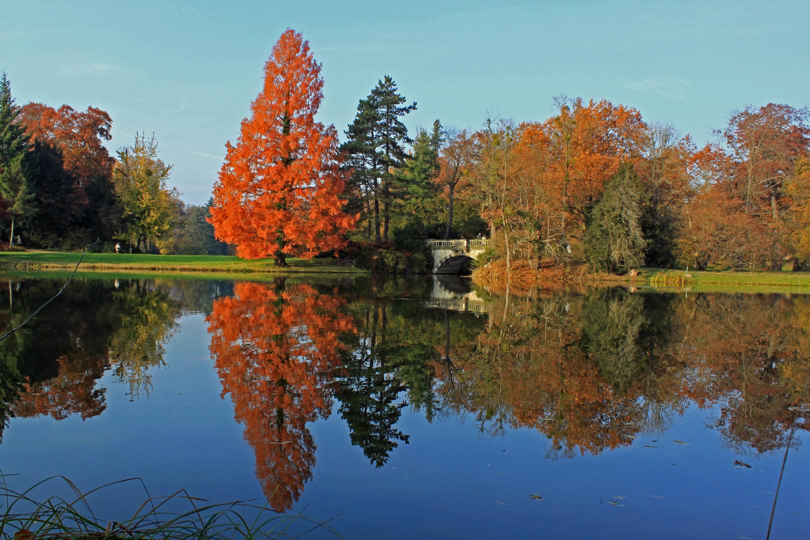 Herbstimpression 2011